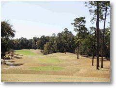 BLOGphoto-TimberCreek-GolfCourse-01252010 [02]